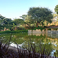 sama landscape design Revitalization of Taljai Hill
